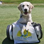 Avalon attending a CCI charity golf game at 6 months.